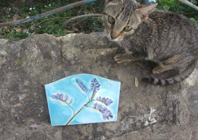 Potentilla leaves with Cat