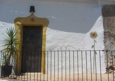 Sunflower on Wall