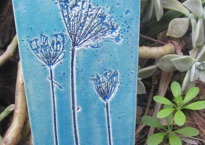Wild carrot in blues